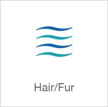 Hair/Fur